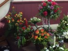 Some photos of the 36 arrangements done by the very talented ladies at workshop December 2016 part four